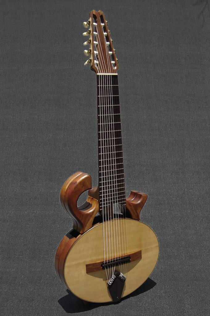 Ten string guitar